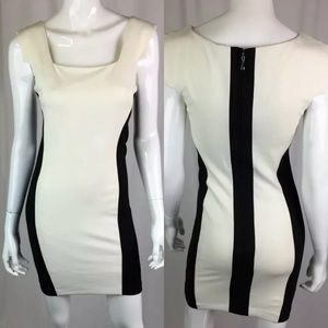 Bebe Stretch Bodycon Colorblock Sheath Dress